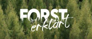Forst erklärt